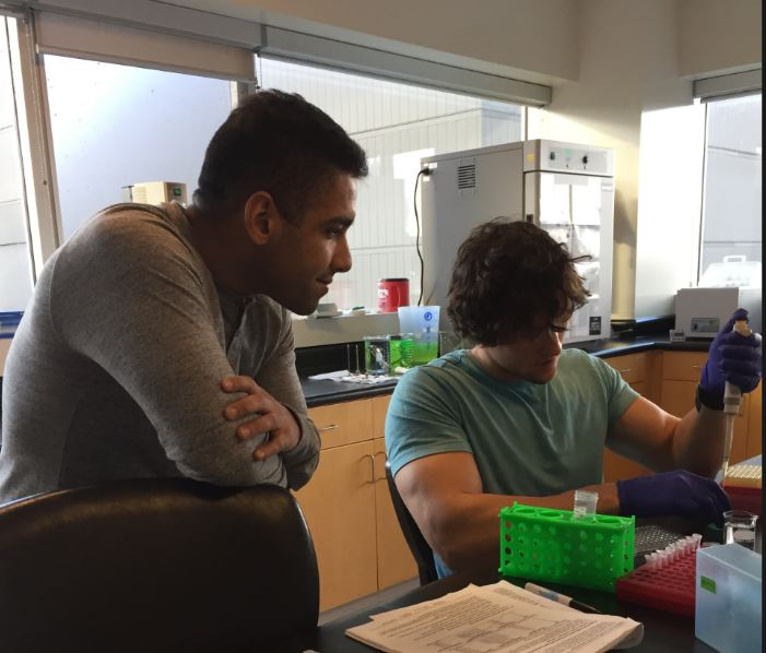 Two lab members at work in a lab